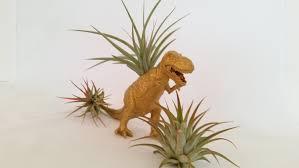 rich gold dinosaur planter air plant holder dinosaur planter
