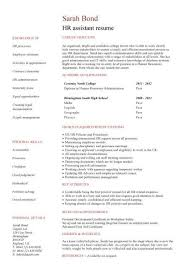 Resume Sample For Human Resource Position by Human Resources Officer Cv Sample