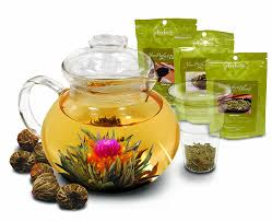 amazon com primula 40 ounce glass teapot with infuser and lid