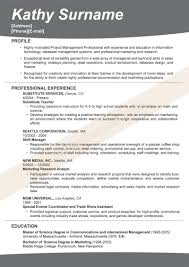 Best Resume Examples Professional by The Best Resume Ever Free Resume Example And Writing Download