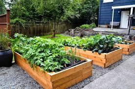 companion vegetable garden layout raised vegetable garden plans gardening ideas