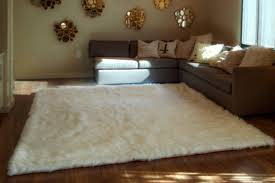 Livingroom Area Rugs Soft Area Rugs For Living Room Ideas And Rickevans Pictures White