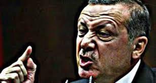 تركيا دولة المرتزقة