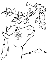 horse and bird coloring page for kids animal coloring pages