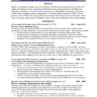 Appealing Vp Operations and Director Client Service Senior     Vntask com     Sample Profile Experience and Client and Marketing Services Resume For Finance Manager a part of under
