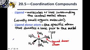 hair stylist resume sample 20 2 introduction to coordination compounds youtube