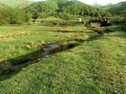 Valea Lupului