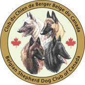 belgian sheepdog national specialty 2018 bsdcc belgian shepherd dog club of canada groenendael laeken