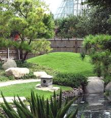 Design a tropical garden with evergreen trees dominant