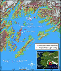 Map Of The Red Sea Map Of Prince William Sound Alaska The Location Of The Exxon
