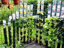 can food crops be grown safely in plastic containers willem van