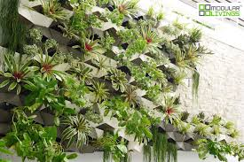 Outdoor Wall Planters by Professional Projects