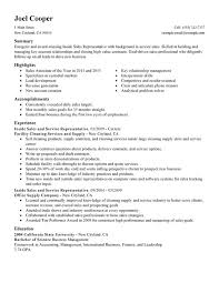 Examples Of Summaries On Resumes by Unforgettable Inside Sales Resume Examples To Stand Out