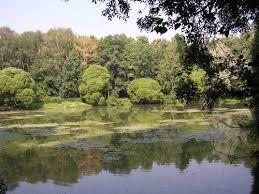 Московские парки станут площадками для кинопоказов