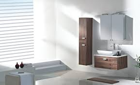 Discount Bathroom Cabinets And Vanities by Bathroom Interesting Robern Medicine Cabinets For Interior