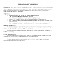 Executive Summary Resume Sample Human Resources Resume Summary