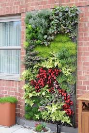 best 25 hydroponic gardening ideas only on pinterest