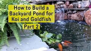 how to build a backyard pond for koi and goldfish part 2 pond