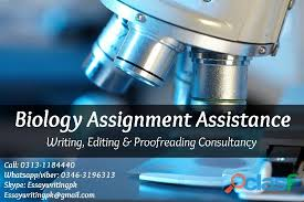help on thesis     Medical dissertation help Dissertation consultation services ann