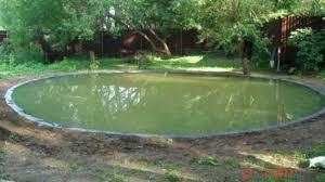 Почему летом зеленеет вода в реках