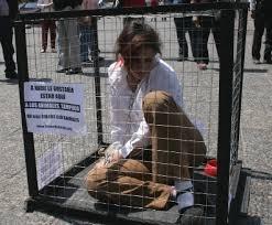 Si los perros gobernaran el mundo...