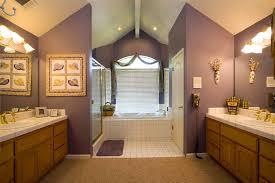 Bathroom Paint Colour Ideas Colors Bathroom Paint Colors And Decorating Ideas Picture Pyqf House