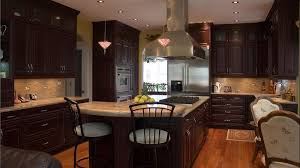 cherry cabinets in kitchen download cherry kitchen cabinets gen4congress com