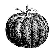 free vintage clip art images free vintage pumpkin clip art