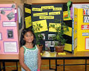 ice cream science fair projects