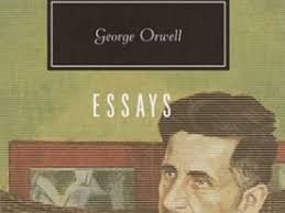 Scarlet Letter essay topics   Mr Rapson s Blog