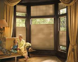 cellular shades u0026 honeycomb window shades blind spot