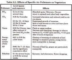 Air Pollution  Essay on the Effects of Air Pollution on Human