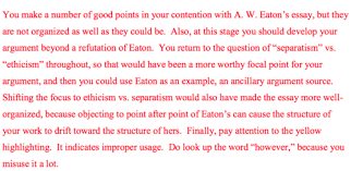 The comments made on my essay two draft by Dr  Eubanks  made me realize that I had lost sight of a great deal of my essay  I realized that while I did