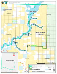New Mexico County Map Programs Wild Horse And Burro Herd Management Herd Management