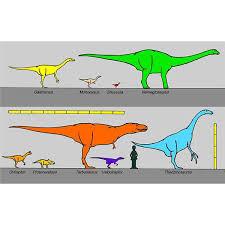 Homework help in science dinosaurs   metricer com Homework help in science dinosaurs