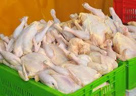 در ولایت قطب تولید مرغ، این محصول گرانتر از همه بلاد دیگر است