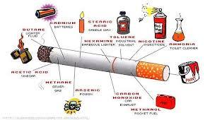 Sehat tanpa rokok