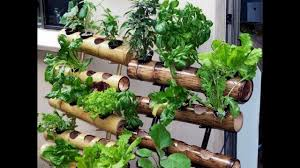Vertical Garden Vegetables by Diy Vertical Garden Design Ideas 2017 Youtube
