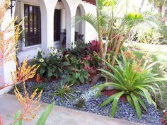 florida front yard landscapes google search
