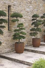 the 25 best outdoor wall planters ideas on pinterest succulent