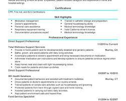 Direct Sales Resume  breakupus pretty sample job resume