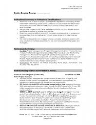 sample resume for program manager sample manager resume summary how to write a executive summary professional summary example template design