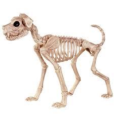 Life Size Skeleton Halloween by Crazy Bonez Halloween Skeleton Buster Bonez 21