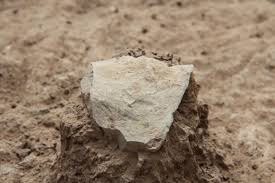 World     s Oldest Stone Tools  Predating Earliest Humans  Found In Kenya