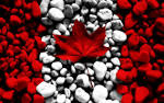 Awesome Canada Flag Designs Wallpapers (wallpapers awesome canada flag designs Real Leaf Stones Vvallpaper Net hdwallpaperpc blogspot 1600x1000)