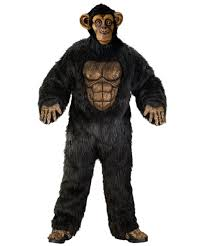 tiger halloween costumes complete chimpanzee costume costume animal halloween