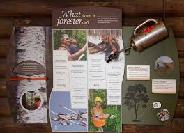 dnr forestry exhibit debut fair releases