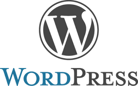 WordPress 3.1.4 Update Now!