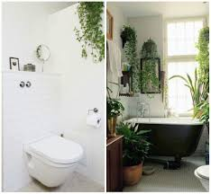 white wall paint for amusing bathroom with tile window beside