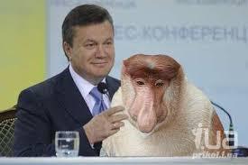 """""""Главное - от Азарова не устал Янукович. Поэтому все остальные должны терпеть,"""" — Фесенко о назначении Азарова - Цензор.НЕТ 3423"""